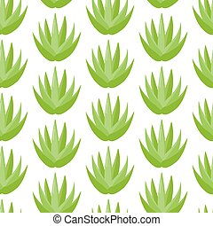 Aloe vera plant vector seamless pattern, Flat design of ...