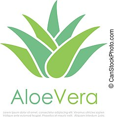 Aloe vera vector logo on white background