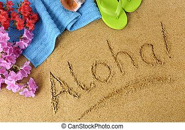 Aloha Background Beautiful Hawaiian Woman Sits On A Rocky Stock