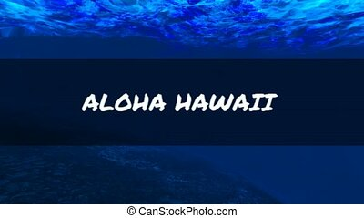 Aloha from Underwater Hawaii