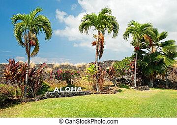 Aloha sign with palm trees on Big Island Hawaii