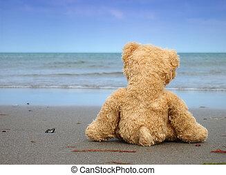 Alone and Desperate - Teddy alone at the Beach - Symbolic ...