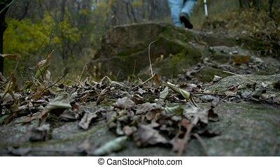 alone climber walking on mountain
