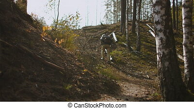 alone hiker in forest at autumn sunny day, rising on slope ...