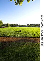 alone in a field - lonely todler in field