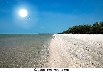Alone on the beach with sun.
