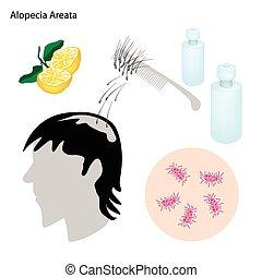 alopecia, areata, betegség, megelőzés, bánásmód
