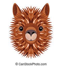 alpaca, illustration., animale, face., isolato, style., ...