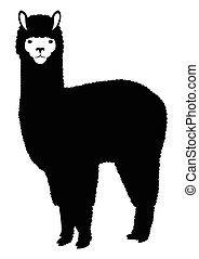 alpaca, lama, silueta