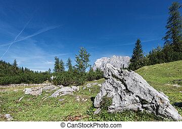 alpen, berg, weide, rots, herfst, oostenrijks, dag