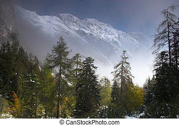 alpes, austríaco