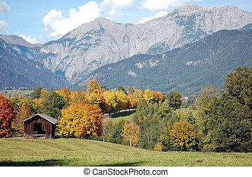 alpes, austríaco, otoño