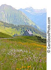 alpes, montañas, en, el, austria