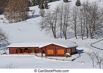Alpes, montanha, chalé, Itália, madeira, após, nevada