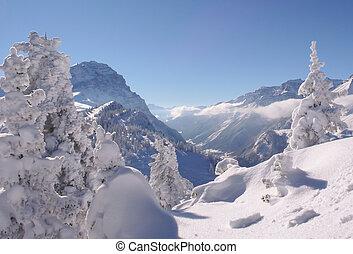 alpes, montanha, grande, neva-coberto, árvores inverno, floresta, suíça, snow-laden, paisagem, vista