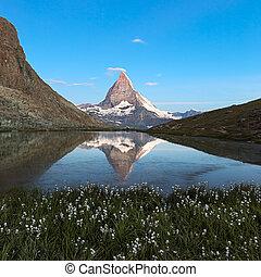 alpes, riffelsee, flores, zermatt, suíça, reflecton,...