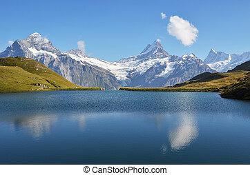 alpes, suizo, bernese, bachalp, lago