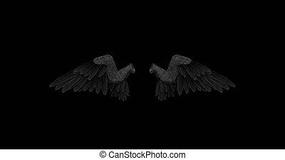 alpha, noir, ailes, ange, canal