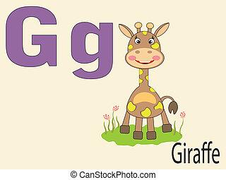 alphabet, animal, g