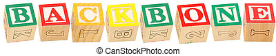 Alphabet Blocks BACKBONE