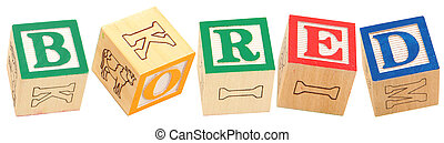 Alphabet Blocks BORED