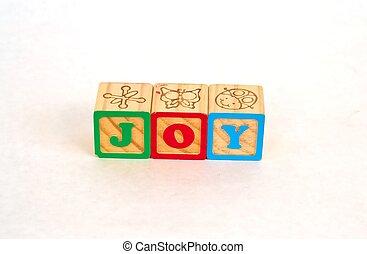 Alphabet Blocks JOY
