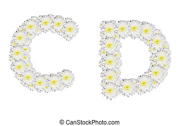 alphabet CD , White Flower isolated on white background