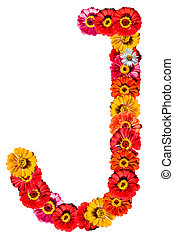 Alphabet collection made from different flowers- J