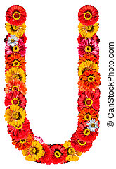 Alphabet collection made from different flowers- U