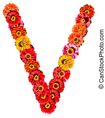 Alphabet collection made from different flowers- V
