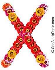 Alphabet collection made from different flowers- X
