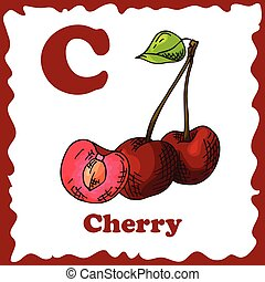 Alphabet for kids with fruits. Healthy letter abc C-Cherry