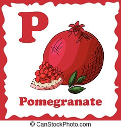 Alphabet for kids with fruits. Healthy letter abc P-Pomegranate