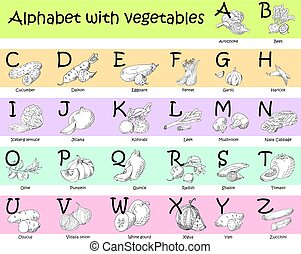 Alphabet for kids with vegetables. English ABC. Cute modern template