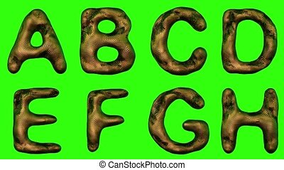 Alphabet from snake skin isolated on green background. The...