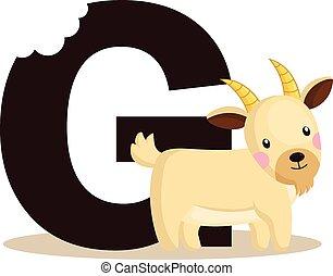 Alphabet G for Goat