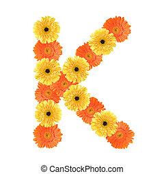 Alphabet K created by flower