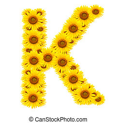 alphabet K , sunflower