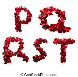 Alphabet letter P - T made from red petals rose isolated on a white background