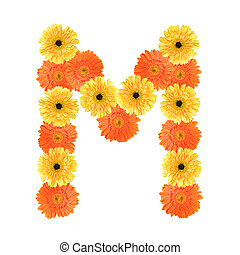 Flower Alphabet M Letter M Made Of Flowers Isolated On White