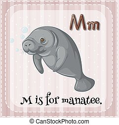 Alphabet M - Flashcard letter m is for manatee