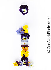 Alphabet made from pansy flowers, letter i