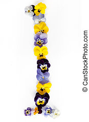 Alphabet made from pansy flowers, letter l