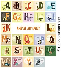 alphabet, names and animals on colored backgrounds