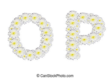 alphabet OP , White Flower isolated on white background