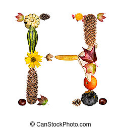 alphabet with autumn symbols letter H