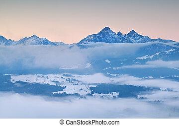 alpi, in, mattina, inverno, nebbia