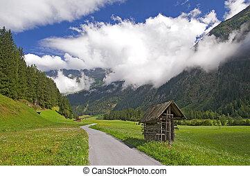 alpi, montagna, austria, valle