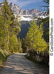 alpi, strada, italiano