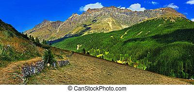 Alpien mountains with hayfield of Rhemes Notre Dame - Alpien...